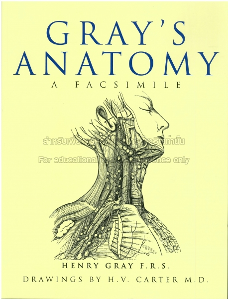 Anatomy Descriptive And Surgical Tcdc Resource Center